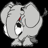 Elefant mit Fussball 2007